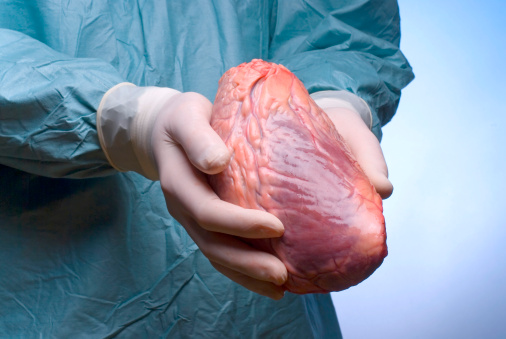 Webinar: Responses to the Global Trade in Illicit Organs